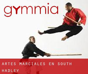 Artes marciales en South Hadley