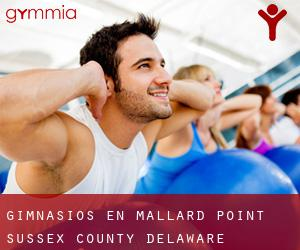 gimnasios en Mallard Point (Sussex County, Delaware)