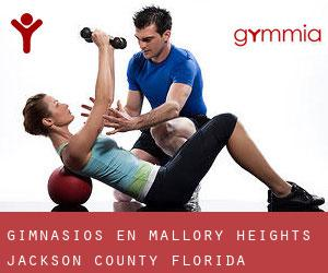 gimnasios en Mallory Heights (Jackson County, Florida)