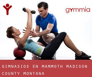 gimnasios en Mammoth (Madison County, Montana)