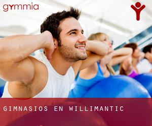 Gimnasios en Willimantic